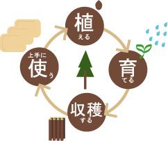 使う→植える→育てる→また使う、という循環