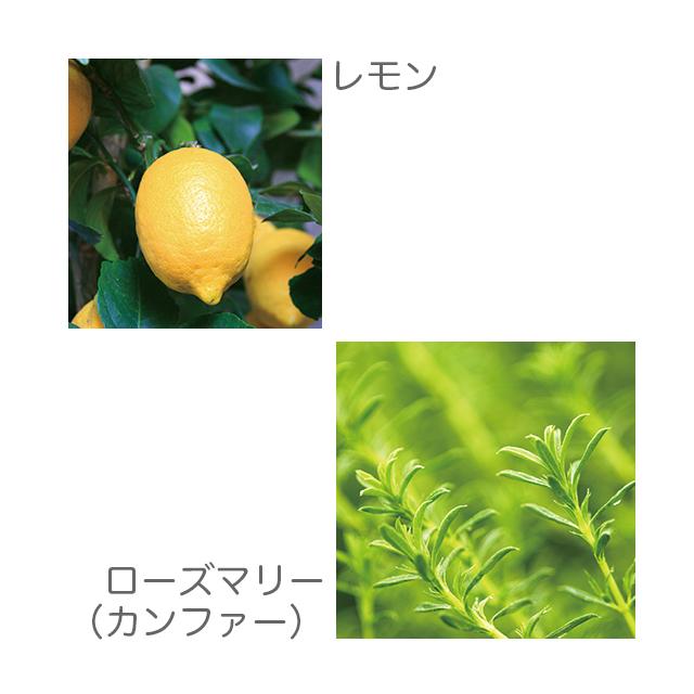 ローズマリー レモン