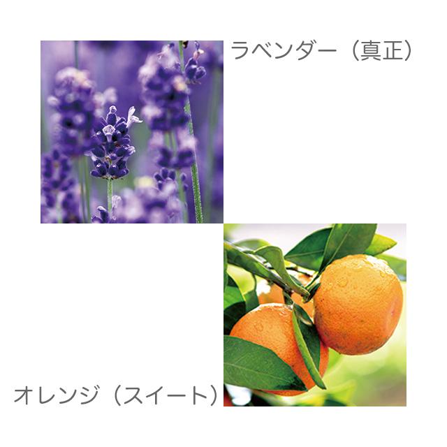 ラベンダー オレンジ